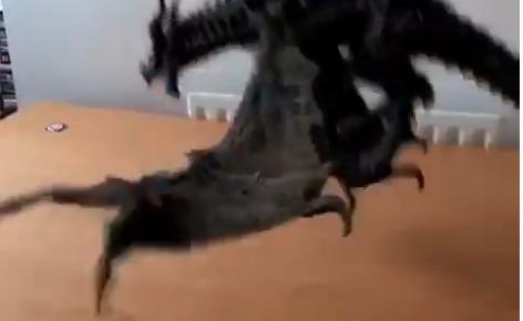 ドラゴンをペットに!半端ないTwitter動画が話題に